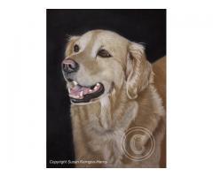 Pet Portraits by Susan Kerrigan-Harris