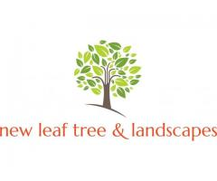 New Leaf Tree & Landscapes
